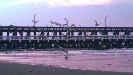 The Chain Gang Of 1974 SLEEPWALKING Juventa Remix Official Lyric Video