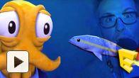 Vid�o : E3 : Octodad, nos impressions vidéo