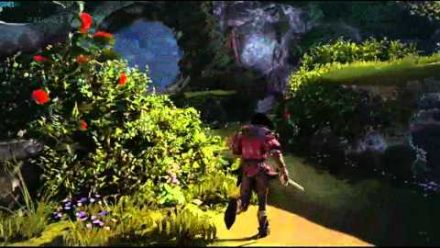 vidéo : Fable Legends Gameplay