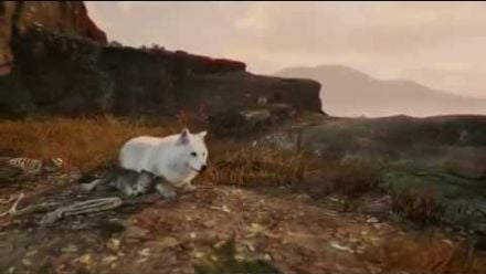Vid�o : WiLD - Gamescom 2014
