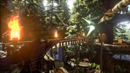 vidéo : Ark Survival Evolved : Biome Redwood Forest et Titanosaure