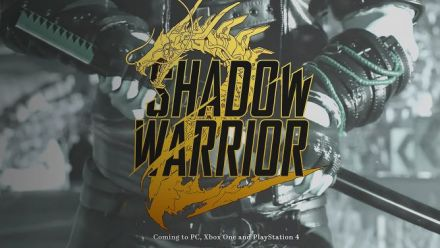 12 minutes de gameplay pour Shadow Warrior