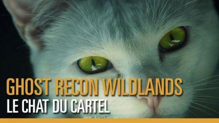 Tom Clancy's Ghost Recon Wildlands - Le chat du Cartel