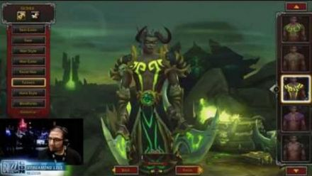 Demon Hunter Gameplay Blizzcon EARLY DEMO