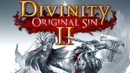 Vid�o : Divinity Original Sin 2 - 20 minutes en co-op