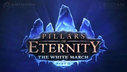 Vid�o : Pillars of Eternity : The White March Part 2 - Story Teaser