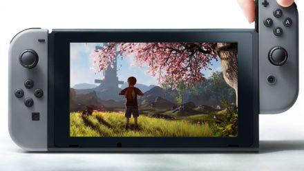 Vid�o : Seasons of Heaven sur Nintendo Switch : Première vidéo exclusive