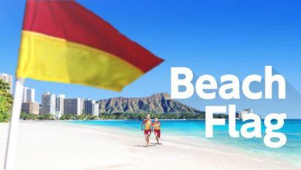 vidéo : 1-2 Switch : Présentation de Beach Flag