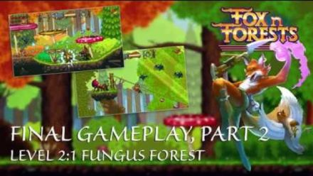 Vidéo : Fox n Forests : stage 2-1