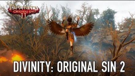 Vid�o : Divinity : Original Sin II arrive sur consoles