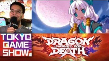 Vidéo : TGS 2018 : On a joué à Dragon : Marked for Death sur Switch