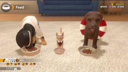 Vidéo : Little Friends : Dogs & Cats - Trailer d'annonce