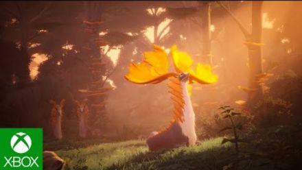 Vid�o : Everwild : Trailer d'annonce