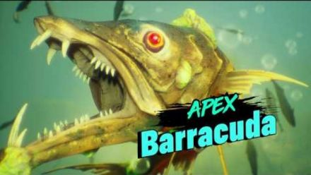 Vid�o : Maneater : Apex Barracuda