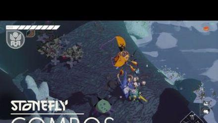Vid�o : Stonefly Snapshot Combos MWM Interactive