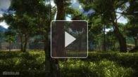 Vidéo : Just Cause 2 - Vidéo de bugs