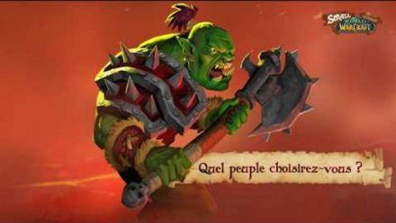 Vidéo : Small World of Warcraft - FR