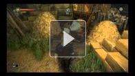 The Witcher 2 tacle Assassin's Creed