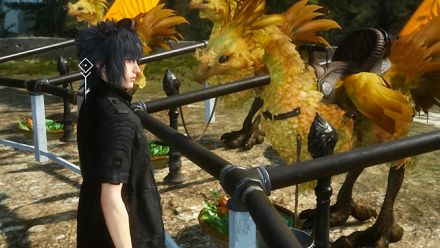 TGS 2015 : Final Fantasy XV, les chocobos et la pêche en vidéo