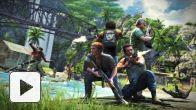 Far Cry 3 - Co-op Mode