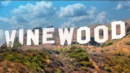 GTA s'offre une série sur AMC, la vidéo qui donne envie