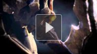 Darksiders II Death lives teaser