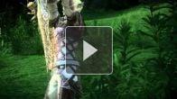 vidéo : Tera - l'archer