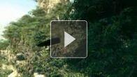 Vid�o : Sniper Ghost Warrior Trailer