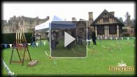 Les Sims Medieval : Webisode 6