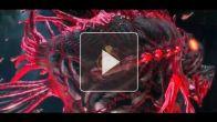 vidéo : Premier niveau 1/2