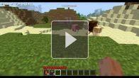 Minecraft - Mo' Creatures