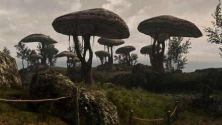 Vid�o : Le trailer du mod Skywind
