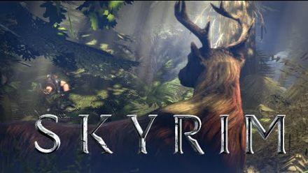 Skyrim : une vidéo parodique amusant de 24 secondes