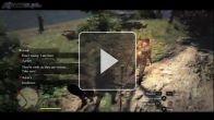 vid�o : Dragon's Dogma Gameblog : Partir à l'aventure