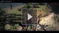 Dragon's Dogma Gameblog : Partir à l'aventure