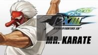 The King of Fighters XIII : Mr. Karate Command List
